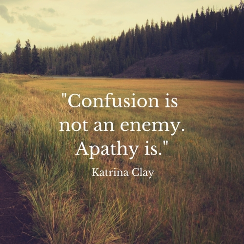Confusion is not the enemy.Apathy is.
